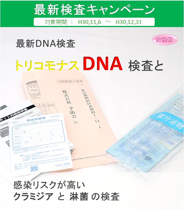 女性C+トリコモナスDNA②