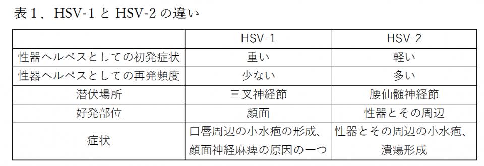 HSV-1・2違い ②