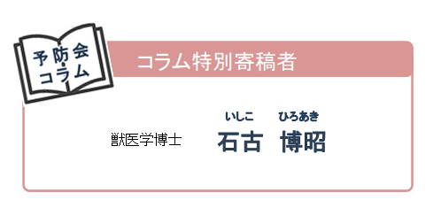 【コラム】石古さん紹介